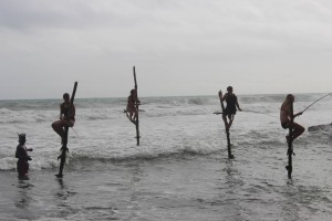 Stick fishing in Weligama